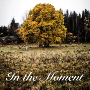 fb_1912222_The Colour of Leaves - In the Moment COVER WWW